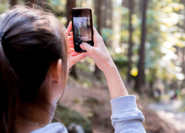 person taking photo on phone in forest
