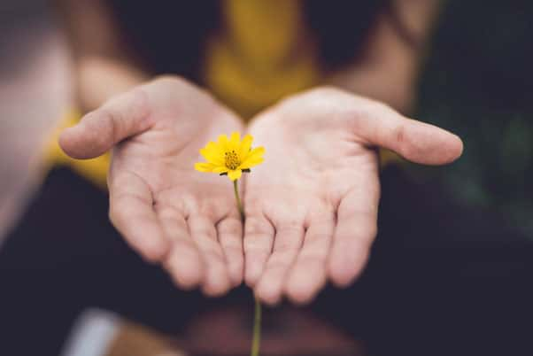 woman holding a small yellow flower nature helps deal with stress and anxiety
