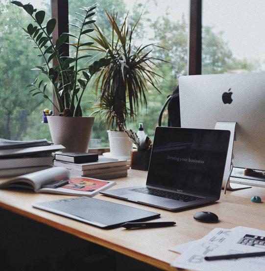 office setup with plants on desk
