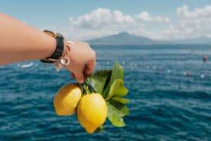 hand holding lemons with sea in background